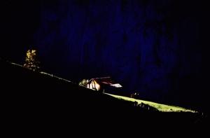 SoY 1990 Alpine Meadow (Derek Forrest)