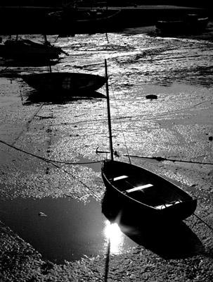 MPoY 1998 Ebb Tide (Charles Woodford)