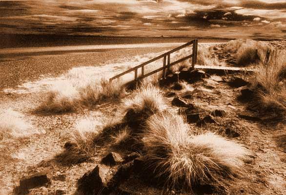 MPoY 2002 Steps (Mick Cameron)