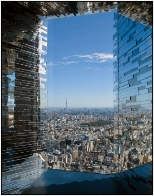 "B PDI 2nd =	""Tokyo Reflected"" by Elaine Woodward"