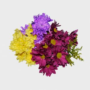 Stuart-Pearson-No-TP-But-Free-Flowers