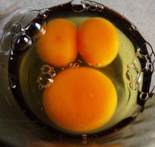 Arlehne-2-Eggs-3-Yolks